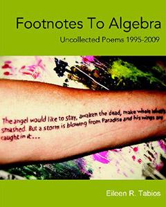 Footnotes to Algebra by Eileen R. Tabios